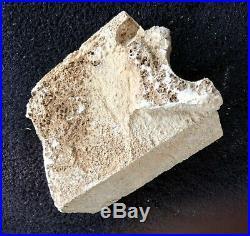 Original Frank Lloyd Wright block fragment #2 San Marcos in the Desert, Ocatillo